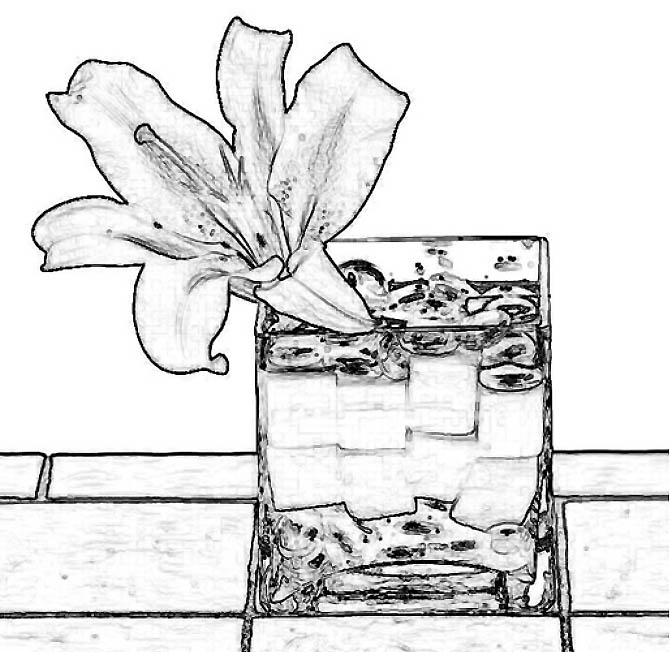 Heliconia Coloring Pages Container Coloring Page